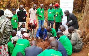 LehererInnen bei einer Fortbildung in einer Baumschule