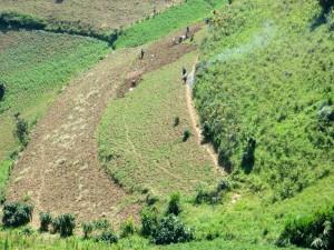 Neue Felder für den Ackerbau
