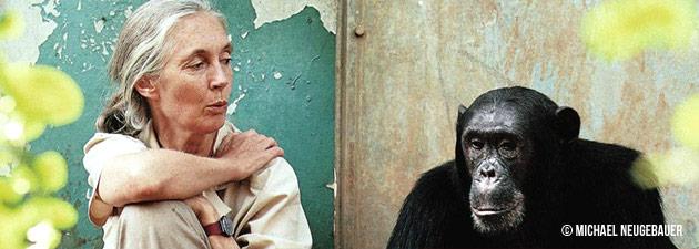 Jane Goodall | Copyright Michael Neugebauer