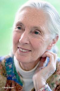Jane Goodall