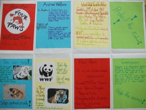2.Austausch | Thema: Tierschutz