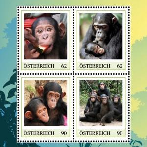 """Markenheft """"Die Welt der Schimpansen"""""""