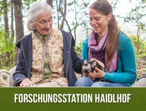 jane-2014-haidlhof