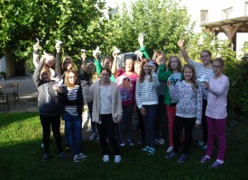 Private Neue Mittelschule Amstetten NÖ