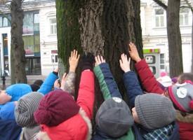 Rothenburgschule, Wien