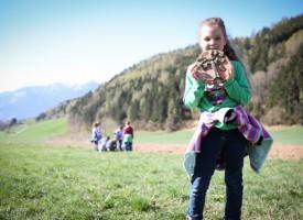 VS Treffling, Kärnten