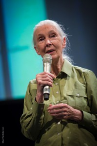 Jane Goodall in Wien