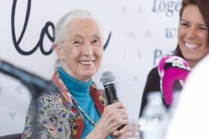 Jane Goodall Wien 2017